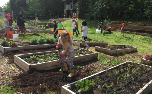 crianças em horta ao livre em Montessori