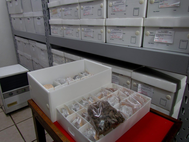 algumas das peças recuperadas no incêndio do MHNJB em acervo provisório
